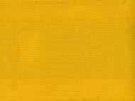 color 43